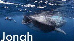 2016-07-12 Jonah Banner